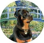 Lily Pond Bridge<br>& Rottweiler 5