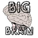 OYOOS Big Brain design