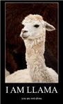 I Am Llama