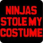 Ninjas Stole My Costume T-Shirt