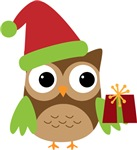Santa Owl Gift