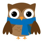 Blue Scarf Winter Owl