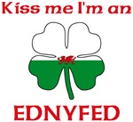 Ednyfed Family