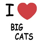 I heart big cats