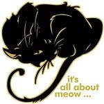 Funny Kitty Cat Kitten