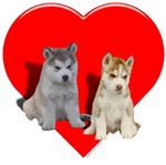 Puppies Valentine heart