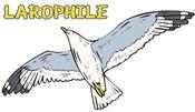 Larophile