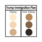 Trump Immigration Plan
