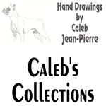 Caleb's Collections