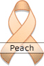 Peach Awareness Ribbon