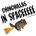 Chinchillas in SPACE