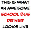 awesome school bus driver