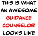awesome guidance counselor