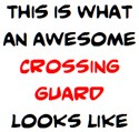awesome crossing guard