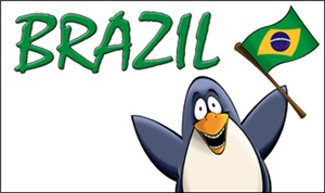 Brazil Penguins