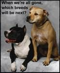 Which Breeds Ban Next?