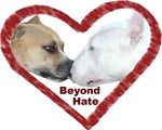 Beyond Hate