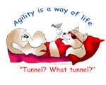 Agility Is A Way of Life: Pom