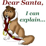 Dear Santa Designs