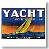 Yacht Brand