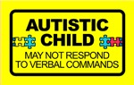 Autism Child Car Decal