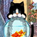 Cat Spying on the Fish