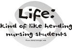 Herding Nursing Students