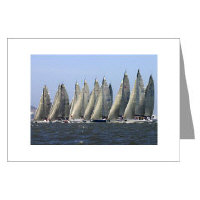 San Francisco Yacht Sailing, Racing Greeting Cards