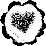 Heart Tree Rings