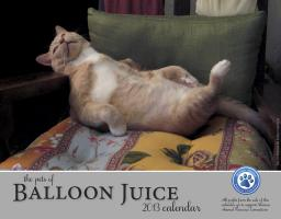 The Pets of Balloon Juice 2013 calendar