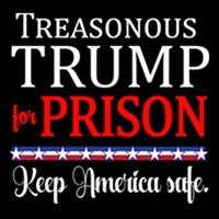 TREASONOUS TRUMP for Prison