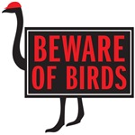 beware of birds