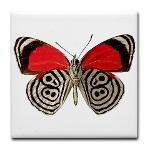 RED & WILD * BUTTERFLY