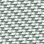 Dunkleosteus pattern
