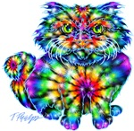 Tie Dye Cat