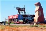 Prairie Dog Store