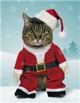 Santa Cat Christmas Cards