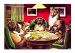 POKER DOGS: WATERLOO