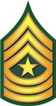 Army - Sergeant Major E-9 - Traditional
