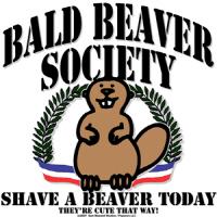 Bald Beaver Society