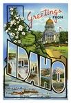 Idaho ID T-shirt Tshirts & Gifts