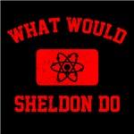 What Would Sheldon Do