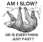 Am I slow? Or is everything just fast? Tshirts, tees, Cards, Trays, Buttons, Stickers, Magnets, and more!