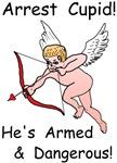 Arrest Cupid