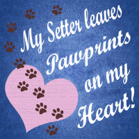 Pawprints Collection