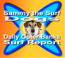 Sammy the Surf Dog