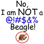 Not a Beagle