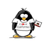 California Penguin