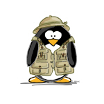 Safari Penguin