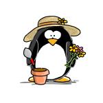 Gardening Penguin